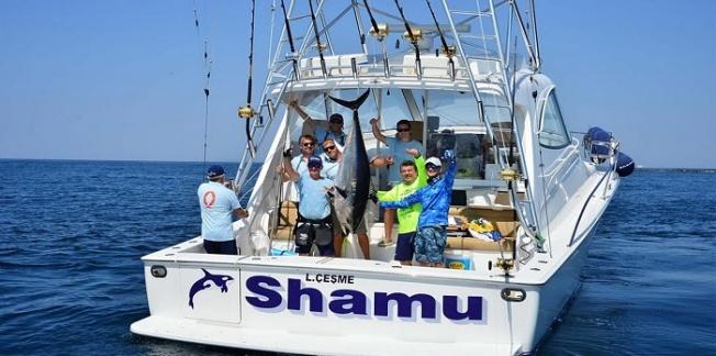 MOST Bodrum Balık Avı Turnuvası için geri sayım başladı