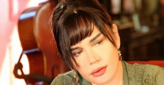 Sezen Aksu, Gezi Parkı konserini iptal etti