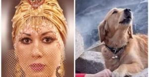 Prenses Banu'dan tepki çeken paylaşım: Köpek beslemek haramdır!