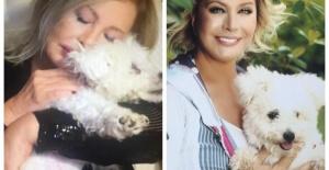 Emel Sayın'ın köpeği Boncuk hayatını kaybetti