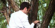 Timur Acar ağaçta mahsur kalan kedinin...