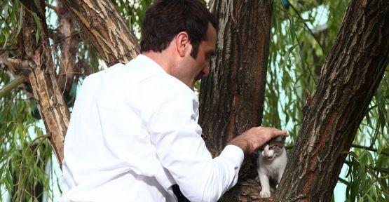 Timur Acar ağaçta mahsur kalan kedinin yardımına koştu